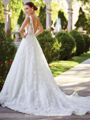 117271 Diamond White back