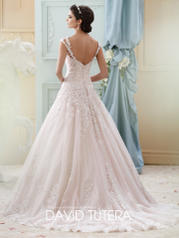 215277 Ivory/Tea Rose back