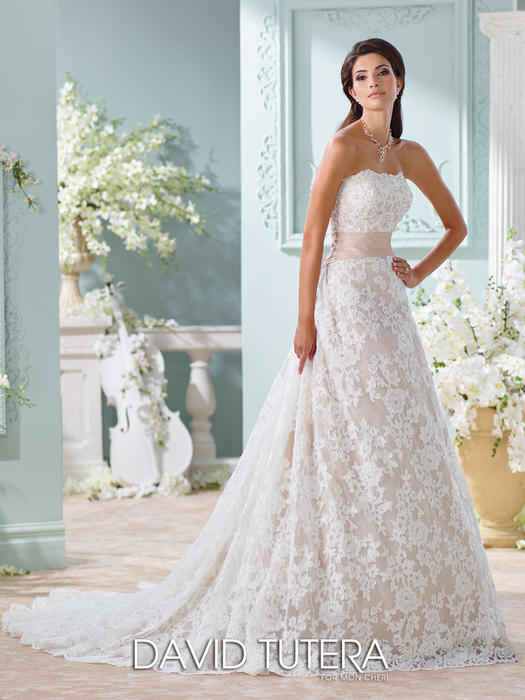 Yalene - David Tutera for Mon Cheri Bridal