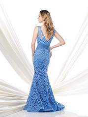 115960 Periwinkle back