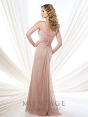215907 English Rose back