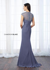 217648 Periwinkle back