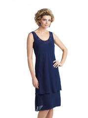 CP21487 Navy Blue front