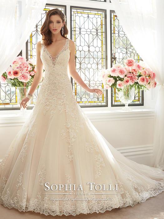 Aricia - Sophia Tolli