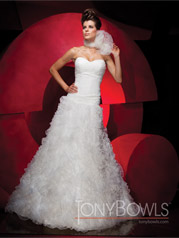 111C36 Tony Bowls Collection