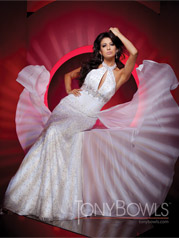 111C37 Tony Bowls Collection
