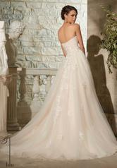 5302 Champagne/Blush/Silver back