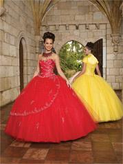 87045 Vizcaya Quinceanera Collection