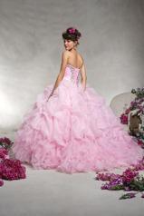 88062 Pink back