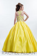 1634 Yellow back