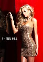 2768 Sherri Hill