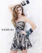 2905 Sherri Hill