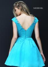50534 Turquoise back