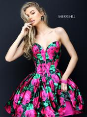 50579 Sherri Hill