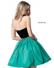 51510 Black/Emerald back