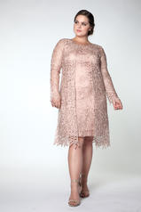 C88084 Dustry Rose front